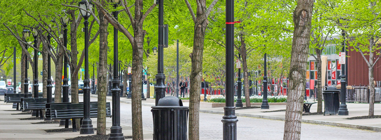 Canadian Cities Are Exploring Green Infrastructure
